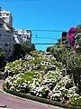 Lombard Street, San Francisco, California.jpg
