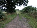 Long Way Round - geograph.org.uk - 217527.jpg