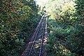 Looe Valley Railway - geograph.org.uk - 269884.jpg