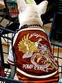 Look how cool my jacket is! (340643210).jpg
