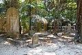 Lord Howe Island cemetery.jpg