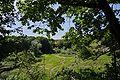 Lueneburg IMGP9693 wp.jpg