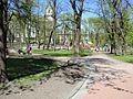 Lviv parkIF02.jpg