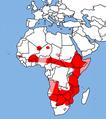Lycaon pictus range map.png