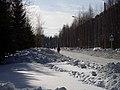 Lyovintsy, Kirovskaya oblast', Russia, 612079 - panoramio (80).jpg