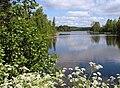 Mörrumsån-Boskvarnasjön-Lindshammar.JPG