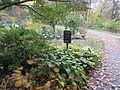 MSU 2014 Botanical Garden H.jpg