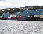 MV Sea Charente - Beset With Gulls (7570268050).jpg