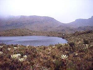 Colombian Massif - Image: Macizo Colombiano