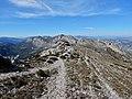 Malla de Llop from Famoca hike (26886093436).jpg