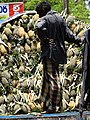 Man on Pineapple-Laden Truck - New Town - Galle - Sri Lanka (14043908482).jpg
