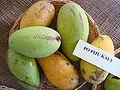 Mango PoPyuKalay Asit fs8.jpg