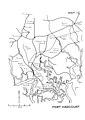 Map 13 Port Harcourt.jpg