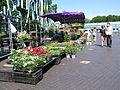 Market Nijmegen.JPG
