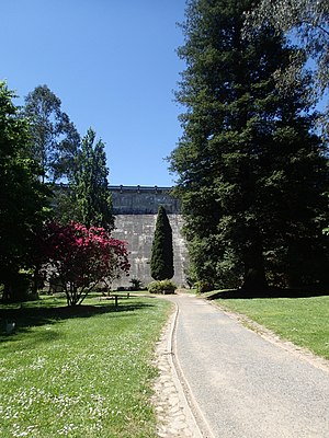 Hugh Linaker - Linaker's style of using vertical trees is evident in his grounds, such as above at the Maroondah Reservoir Park.