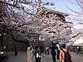 Marunouchi, Matsuyama, Ehime Prefecture 790-0008, Japan - panoramio (44).jpg
