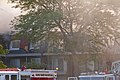 Massive Condominium Complex Fire Prospect Heights Illinois 7-18-18 2643 (29632494538).jpg