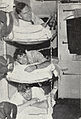 Members of the Commonwealth Trans-Antarctic Expedition in a cabin on the HMNZS Endeavour, 1956.jpg