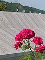 Memoriale di Srebrenica.jpg