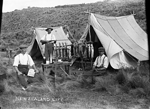 """Three men at their camp site displaying a catch of rabbits and fish. A marginal note reads """"New Zealand Life""""."""