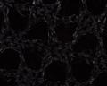 Microscopio - Tela Calza elástica 2.png