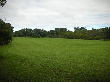 A field north of Fox Den Rd., along the Lenape Trail in Middle Run Valley Natural Area MiddleRunArea Field LenapeTrail.jpg