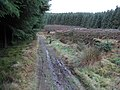 Minchmoor road - geograph.org.uk - 294840.jpg