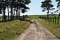 Minor road heading across Bryn Dadlau - geograph.org.uk - 1438276.jpg