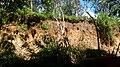 Miringuava, São José dos Pinhais - PR, Brazil - panoramio (3).jpg