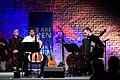 Mislav Brajkovic (cello) and Bogdan Laketic (accordion) performing Bela Bartok's Romanian Folk Dances at the Inauguration of the Central European University Vienna Campus on November 15, 2019 in Expedithalle, Vienna.jpg