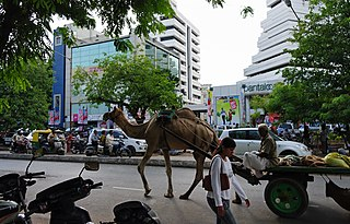 Demographics and culture of Ahmedabad