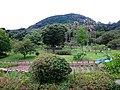 Miyajitake jinja museum - panoramio (9).jpg