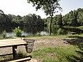 Mont-Saint-Jean (Sarthe) étang de pêche (02).jpg