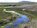 Moss (Iceland) 02.jpg