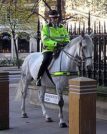 Mounted.police.london.arp.600pix.jpg