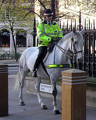Paternoster Row - A mounted officer of the City of London Police entering Paternoster Row in November 2004.