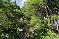 Mt.Utsugidake 02.jpg