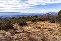 Munds Mountain Trail (23988411527).jpg