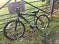My bike in Dorset.jpg