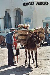 Utilisation de l'âne dans ANE 170px-Mykonos_Market