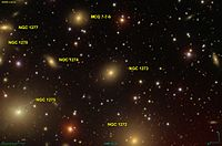 NGC 1273 SDSS.jpg