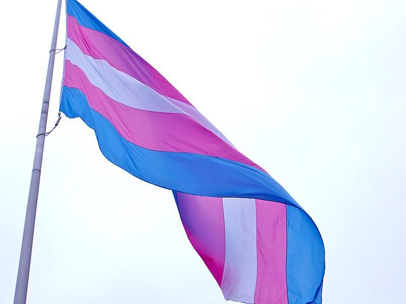 File:NPP NATIONAL PROGRESS PARTY FLAG 4.jpg