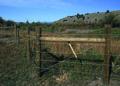 NRCSMT01056 - Montana (4961)(NRCS Photo Gallery).tif