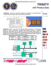 NSA TRINITY