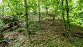 NSG Kellenberger Kamp WDPA ID 82053 FFH-Gebiet Kellenberg und Rur zwischen Flossdorf und Broich WDPA ID 555520333 Steilhang Naehe Flossdorf I.jpg