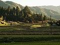 Nakatocho, Toyota, Aichi Prefecture 441-2514, Japan - panoramio.jpg