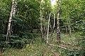 National nature reserve Milešovka in summer 2014 (2).JPG