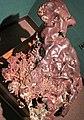 Native copper vein (Mesoproterozoic, 1.05-1.06 Ga; Great Sand Bay, Keweenaw County, Upper Peninsula of Michigan, USA) 3 (17277777476).jpg