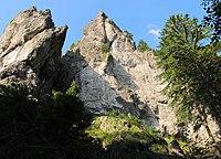 Nature reserve Macie diery (6).jpg