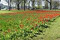 Natuur Breda P1360729.jpg